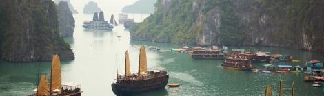 Junks in Ha Long Bay