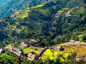 Nepali landscape