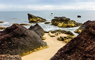 Laterite rocks, Thottada Beach, Kannur, Kerala, India