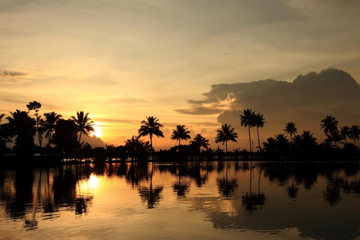 Kerala Backwater landscape
