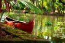 Canoe in Kerala Canal