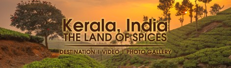 Kerala India Travel Guide