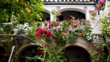 Patio, Andalusia, Spain