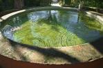 Circular fountain, Cordoba, Spain