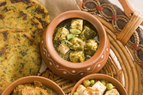 Best Traditional Indian Dishes Palak Paneer