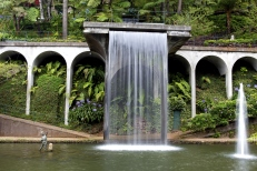 Waterfall in tropical garden on Madeira