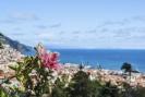 Madeira Island scenics Funchal city coastline