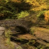 Gallery: Watkins Glen State Park in New York