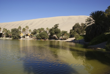 Lagoon in the Oasis of Huacachina
