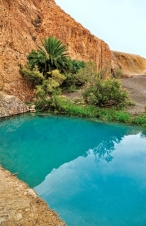 Little pond in Chebika oasis at border of Sahara, Tunisia, Africa
