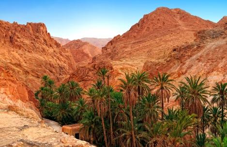 Mountain oasis Chebika at border of Sahara, Tunisia, Africa