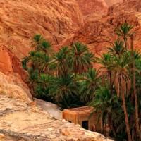 Gallery: The Mountain Oasis of Chebika, Tunisia