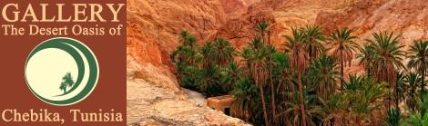 Chebika Desert Oasis in Tunisia
