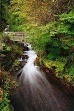 Wahkeena Falls in Autumn