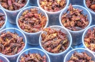 Chapulines, Edible Grasshoppers