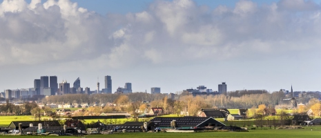 The Hague skyline